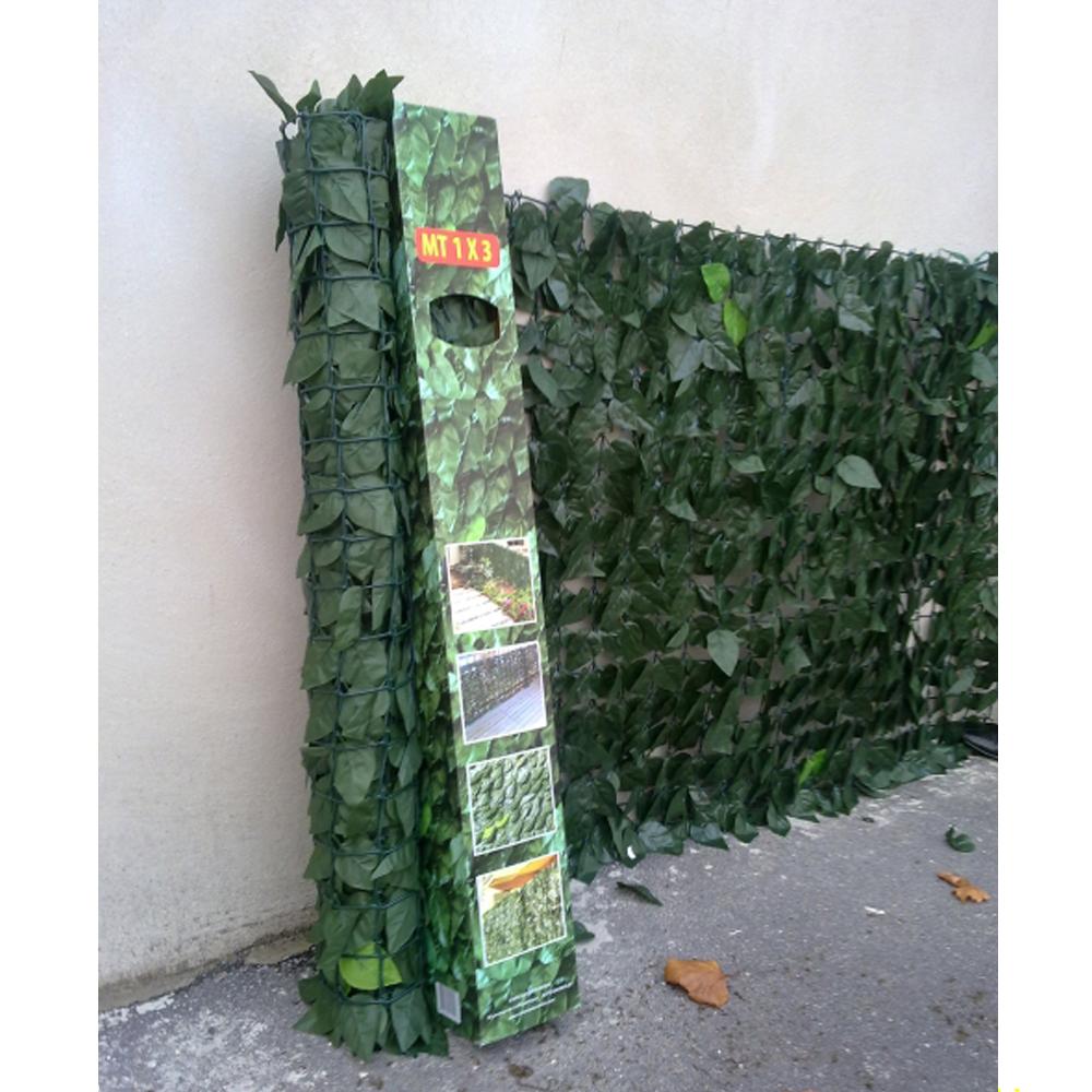 une haie de laurier verte toute l 39 ann e brise vue et. Black Bedroom Furniture Sets. Home Design Ideas